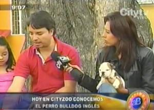 Entrevista CityTv